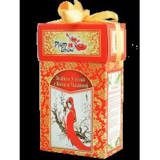 Plum Snow Плам Сноу Зеленая улитка с киви и малиной 100г. (Китай)